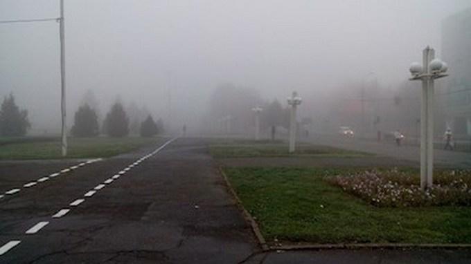 Украину окутало туманом: опубликованы фото (4)
