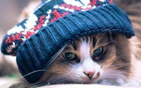 Заморозки повертаються: в Україні різко погіршиться погода