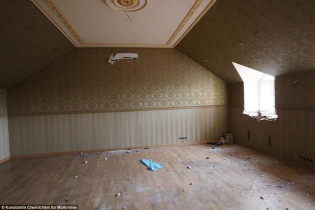 На Западе появились впечатляющие фото разграбленного дворца Пшонки (16)