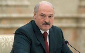"""""""Робимо подарунок ворогам"""": для чого Лукашенко зустрічався з кумом Путіна"""