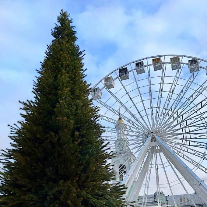 В Киеве уже установлена главная елка страны 2019: новые зрелищные фото (7)