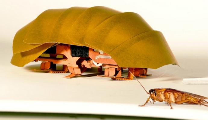 Для армии США создали робота-таракана