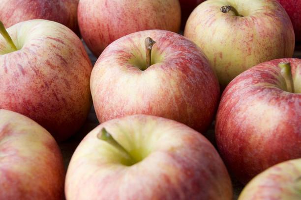 Яблочная диета может предотвратить инфаркт