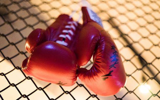 Вражаючий курйоз на рингу - боксери влаштували одночасний подвійний нокдаун
