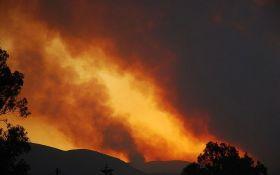 Смертельні пожежі у Греції - затримано підозрюваного в підпалах