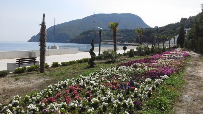 Туризм по-русски: сеть обсуждает новые показательные фото с пляжей Крыма (3)