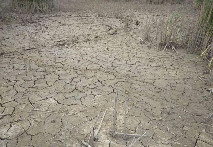 Катастрофа на Донбасі: в мережі показали жахливі фото наслідків затоплення атомної шахти