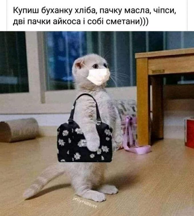 Смеяться не запрещается: самые популярные мемы и приколы о коронавирусе (2)