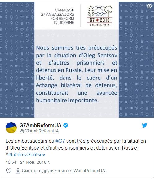 Мы очень обеспокоены: в G7 предложили новый план освобождения украинских политзаключенных (1)