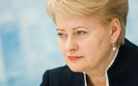 """Грибаускайте знову закликає ЄС обговорити ідеї """"військового Шенгену"""""""