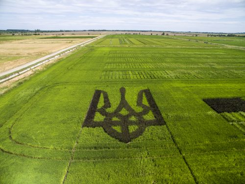 Символ України тепер видно з космосу: з'явилися фото (1)