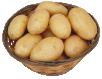 О сортах картофеля