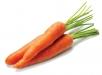 Влияние удобрений накачество моркови