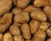 Картофель поднавозным колпаком