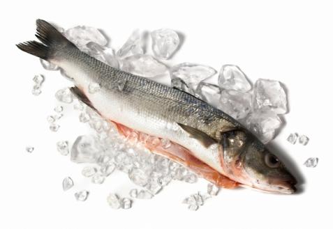 Секреты быстрой разморозки рыбы
