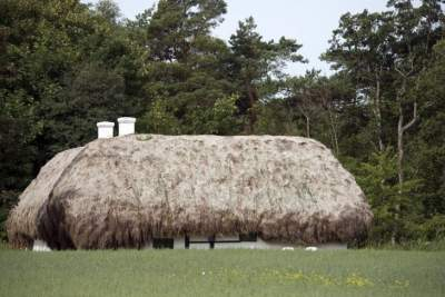 В этой деревне крыши домов сделаны из водорослей. Фото