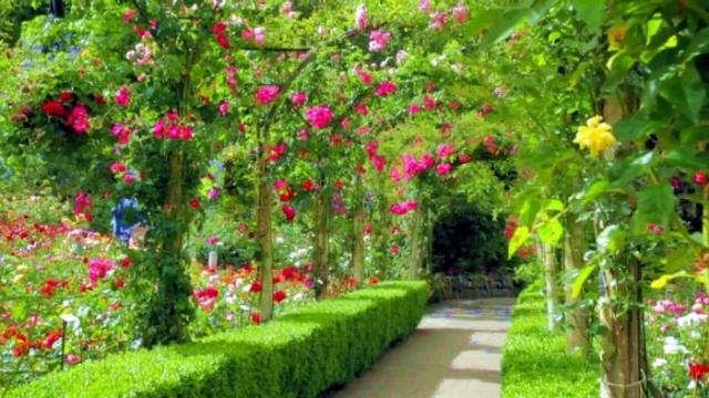 красивые сады мира - 04