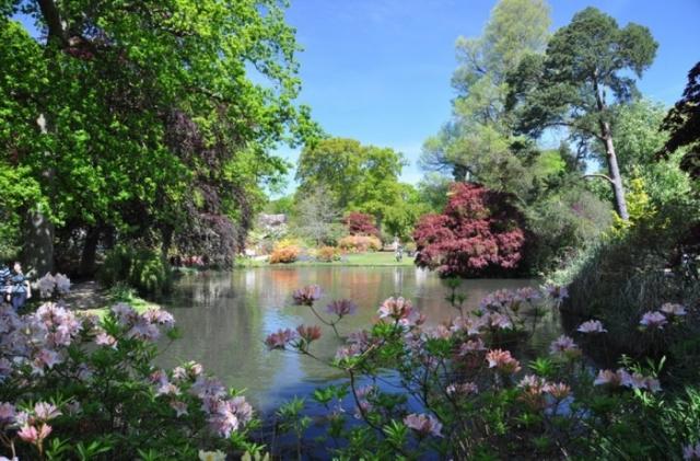красивые сады мира - 11