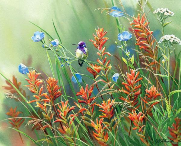 птицы в живописи Susan Bourdet - 06