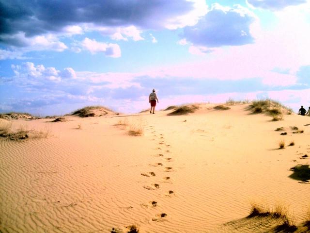 На территории Украины есть пустыня площадью 160 тысяч гектаров