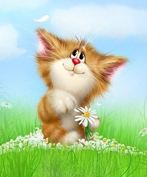 милый котёнок с ромашкой