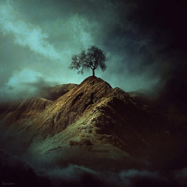 Одиночество. Автор: Barbara Florczyk.