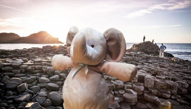 """Результат пошуку зображень за запитом """"Плюшевый слоник, которого потерял малыш, стал великим путешественником (30 фото)"""""""
