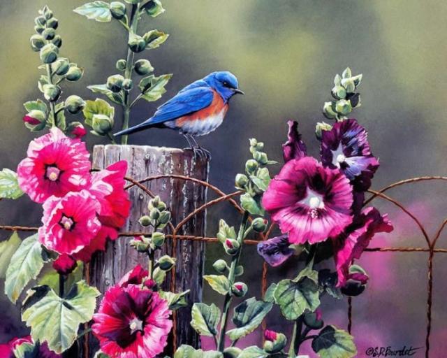 птицы в живописи Susan Bourdet - 01