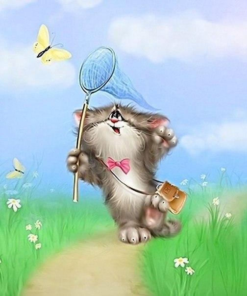 милый котёнок ловит бабочку сачком