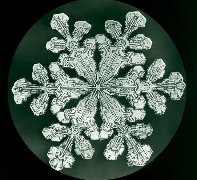 Невероятная красота: первые в мире фото снежинок - фото 417060