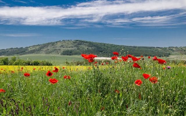 Обои - Красивые пейзажи и неповторимая природа