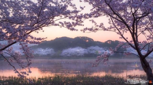 Прекрасное весеннее утро на озере.