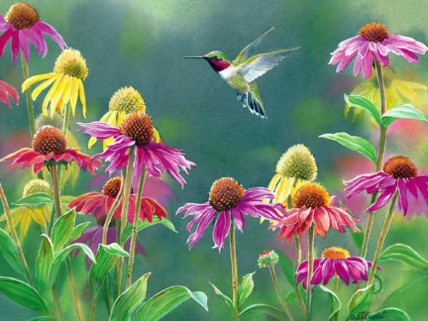 птицы в живописи Susan Bourdet - 04