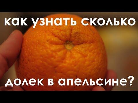 """Результат пошуку зображень за запитом """"Как на спор узнать сколько долек в апельсине? картинка"""""""
