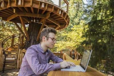 Microsoft построила для своих сотрудников домики на деревьях. Фото