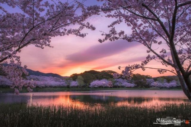 Изумительный восход солнца над озером в пригороде префектуры Аити.