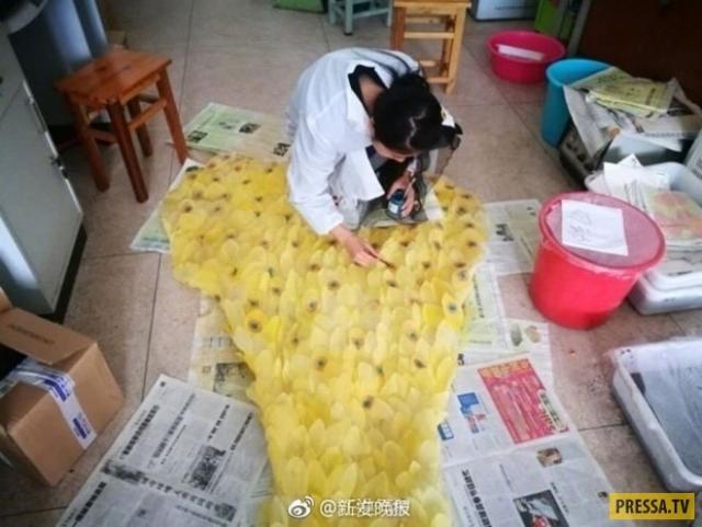 Фото: Китайская студентка создала удивительное платье из листьев (Фото)