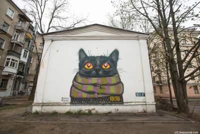 Улицы Минска украсили граффити котов. Фото