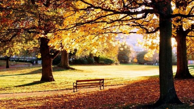 Обои на рабочий стол. Очаровательная осень. Часть 5