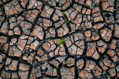 Засуху в Нидерландах показали в впечатляющих пейзажах. Фото