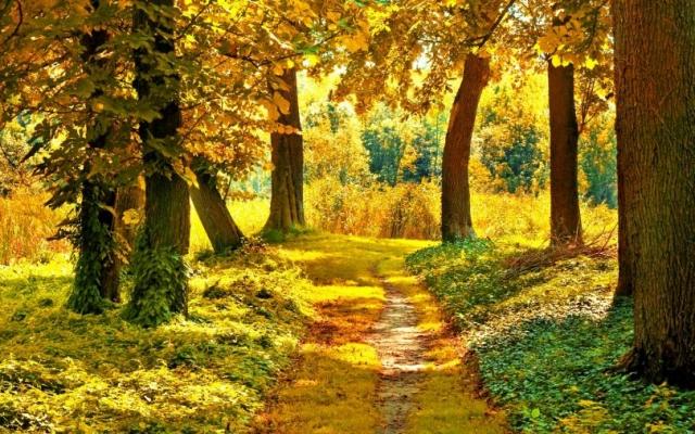 Обои - Природа. Осенние пейзажи