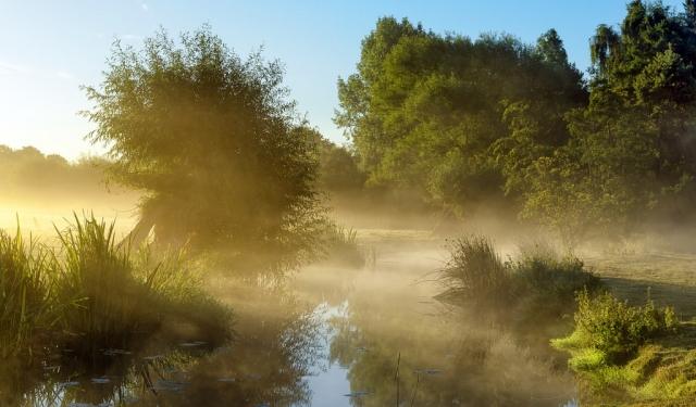 рассвет у реки фото - 08