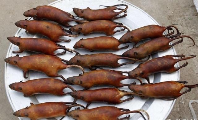 Жареные крысы на блюде. | Фото: newsland.com.