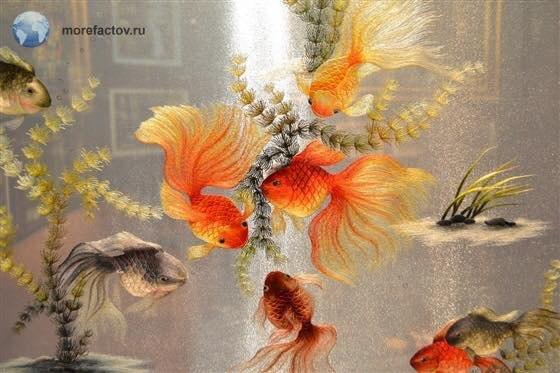 Вьетнам издавна славится своим шелком. Вьетнамские шелковые нити поражают своей богатой палитрой ... - 5