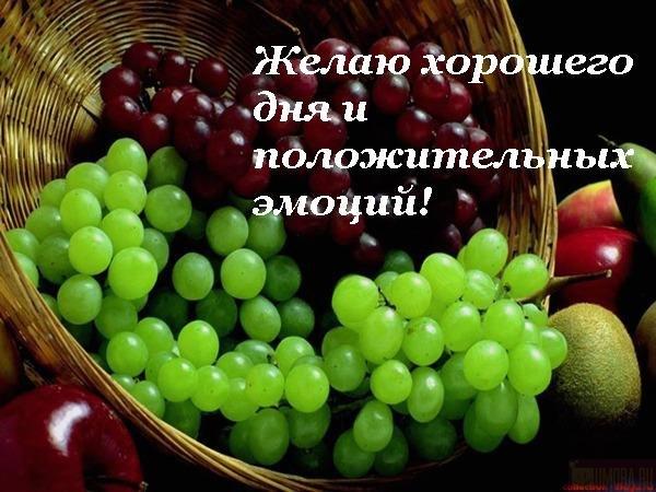 Картинки по запросу хорошего осеннего воскресного дня
