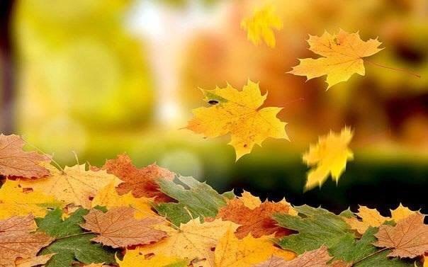 Закружилась листва золотая.В розоватой воде на пруду,Словно бабочек легкая стаяС замираньем летит на ... - 4