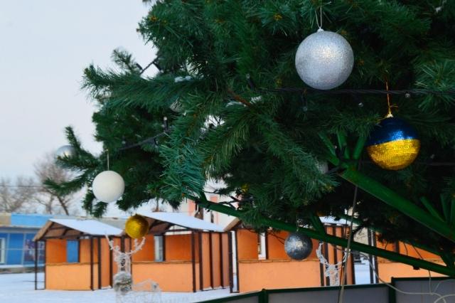 Рождественская авто-фото-прогулка по заснеженной Килии (фоторепортаж)
