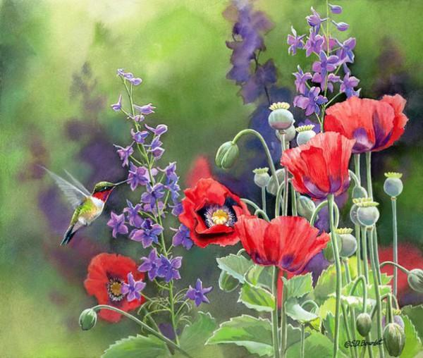 птицы в живописи Susan Bourdet - 05