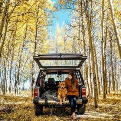 Путешествующая по миру собака стала звездой Instagram. Фото