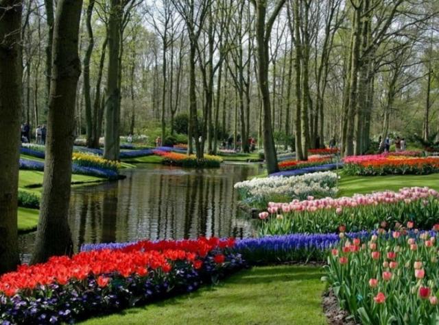 красивые сады мира - 05